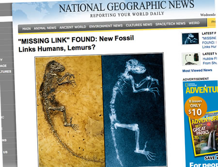missing link national geographic